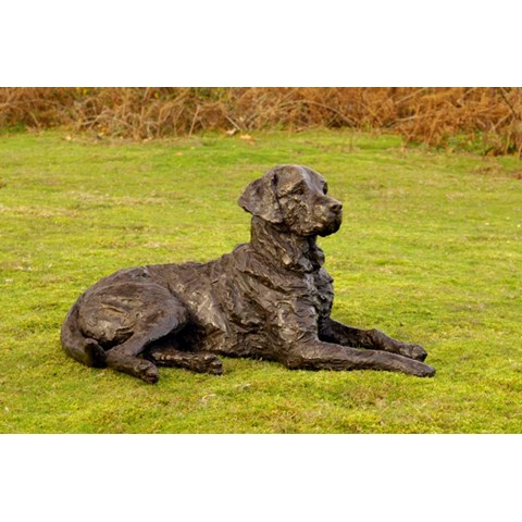 Saxon, Labrador by Rosemary Cook at the Saffron Walden Gallery