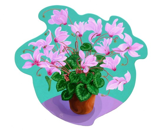Cyclamen by Marina Elphick at the Saffron Walden Gallery