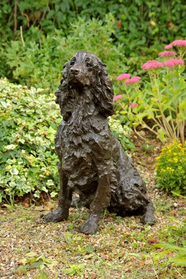 Dash, Springer Spaniel by Rosemary Cook at the Saffron Walden Gallery