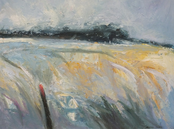 Windy Field by Stephen James at the Saffron Walden Gallery
