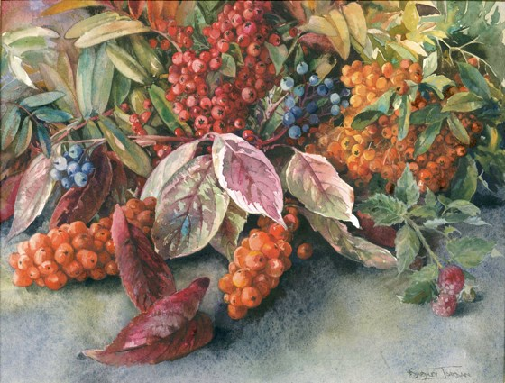 Autumn Berries by Tessa Shedley Jordan at the Saffron Walden Gallery