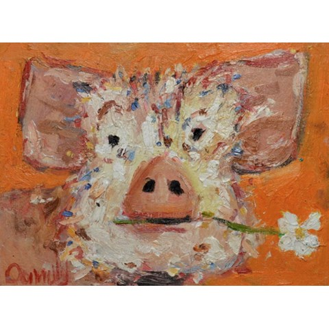 Gilbert Pig by Deborah Donnelly at the Saffron Walden Gallery