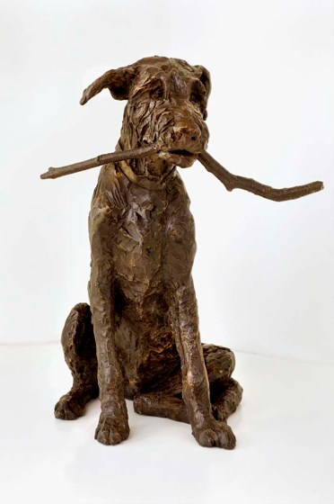 Fingal, Wolfhound puppy by Rosemary Cook at the Saffron Walden Gallery