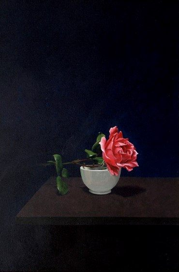 Rose by David Paul Gleeson at the Saffron Walden Gallery