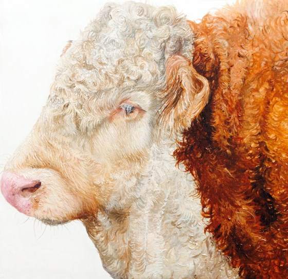 Bull Portrait by Katie Wilkins at the Saffron Walden Gallery