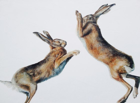 Boxing Hares by Katie Wilkins at the Saffron Walden Gallery