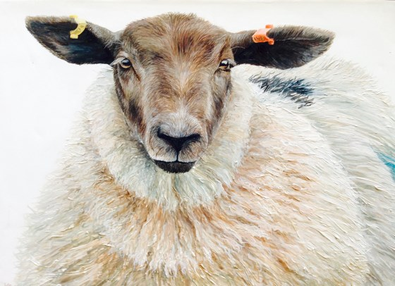 The Ewe by Katie Wilkins at the Saffron Walden Gallery