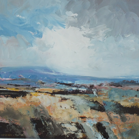 Purbeck Sky II by Stephen J Foster at the Saffron Walden Gallery