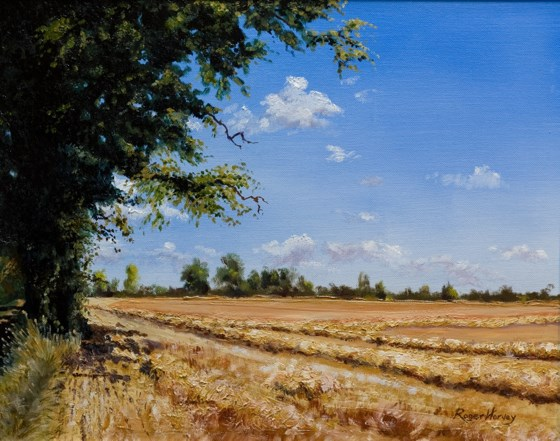 Harvest, Finningham Road Suffolk by Roger Harvey at the Saffron Walden Gallery