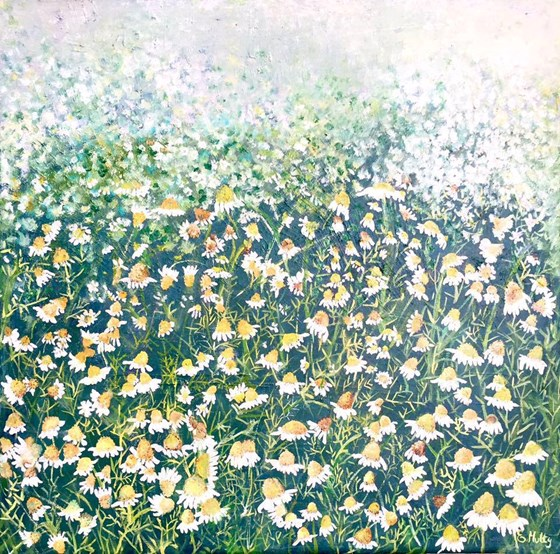 Camomile Profusion by Elisabetta Mutty at the Saffron Walden Gallery