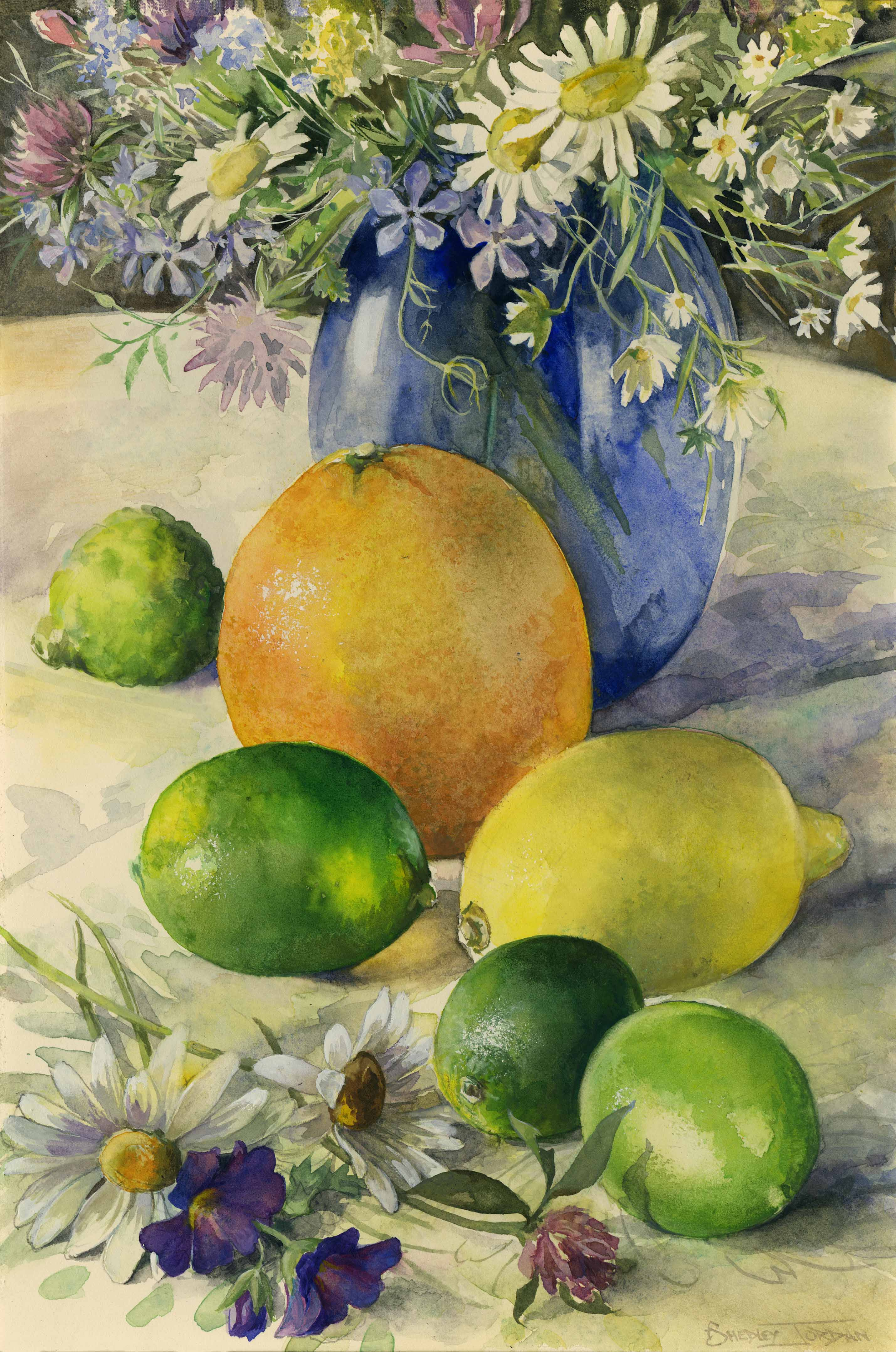 Still Life & Citrus Fruits