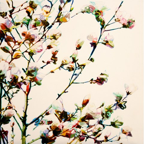 Magnolia White by  at the Saffron Walden Gallery