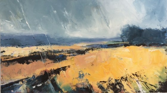 Yellow Field Grey Day by Stephen J Foster at the Saffron Walden Gallery