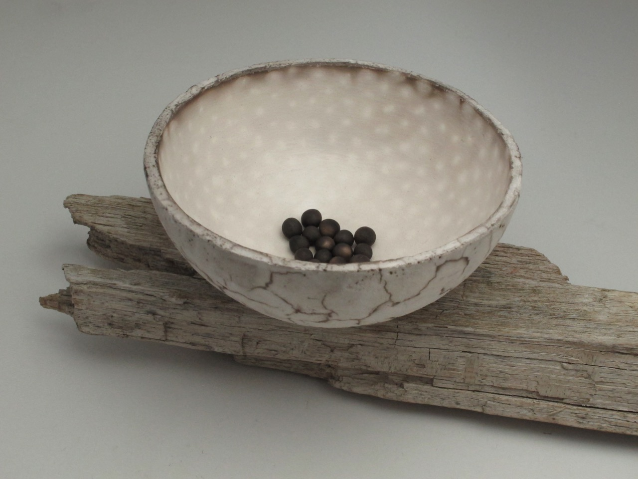 Large Speckled Vessel and Small Seeds on Driftwood