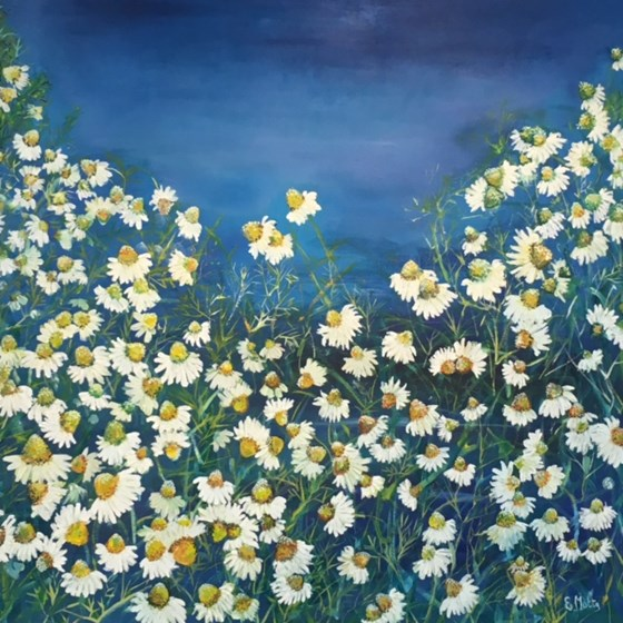 Camomile in Blue by Elisabetta Mutty at the Saffron Walden Gallery