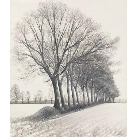 Tree Lined Field by Debbie Baxter at the Saffron Walden Gallery