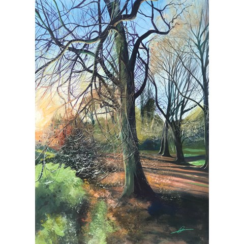 Into the Woods, Beech by Debbie Baxter at the Saffron Walden Gallery