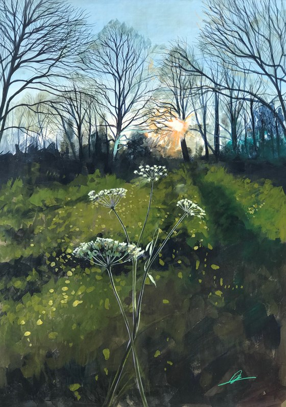 Into the Woods from the Fields by Debbie Baxter at the Saffron Walden Gallery