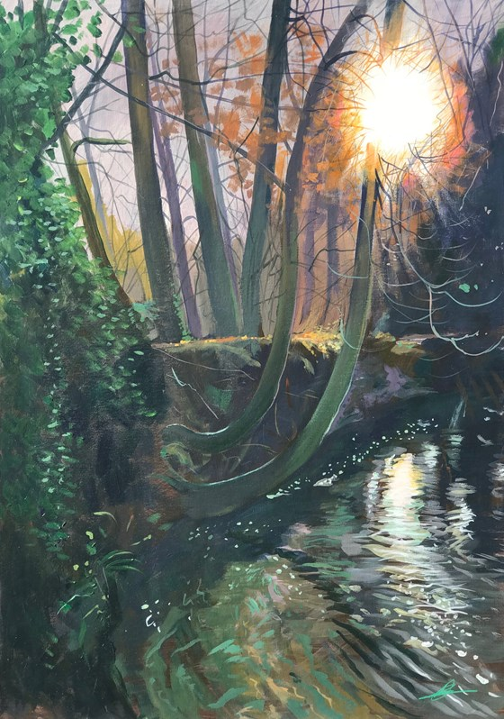 Into the Woods River Stream by Debbie Baxter at the Saffron Walden Gallery