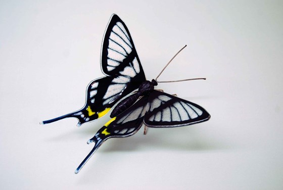 Sylphina Angel Butterfly by Laura Hart at the Saffron Walden Gallery