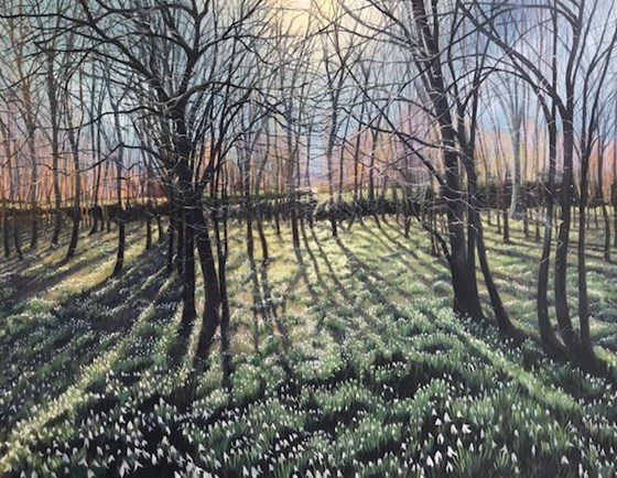 Lying on a Bed of Snowdrops by Debbie Baxter at the Saffron Walden Gallery