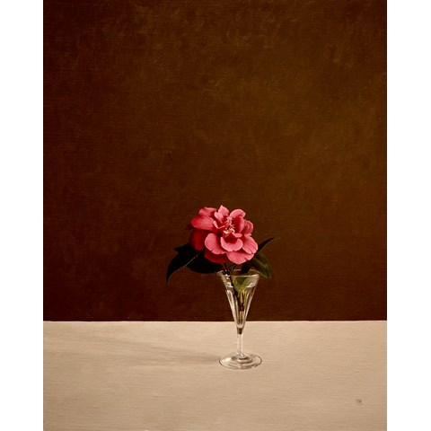 Camellia by David Paul Gleeson at the Saffron Walden Gallery
