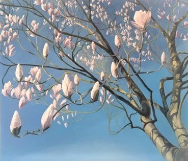 Magnolias, First Sign of Spring by Debbie Baxter at the Saffron Walden Gallery