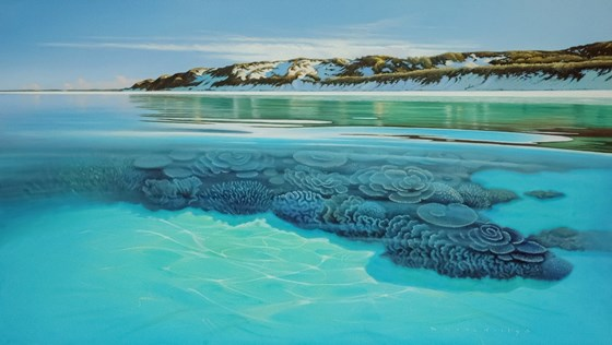 Paradise Beach Coral Bay Western Australia by Daniel Hutchings at the Saffron Walden Gallery