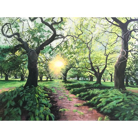 Ancient Oaks of Suffolk by Debbie Baxter at the Saffron Walden Gallery